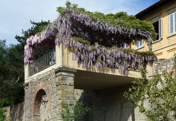 Holiday Rentals In Acone Italy Villas Vacation Rentals